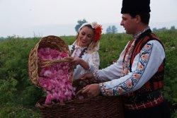 画像4: ローズオットー(ブルガリア)ダマスクローズ1ml精油